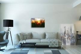 Leinwandbild 50x70cm