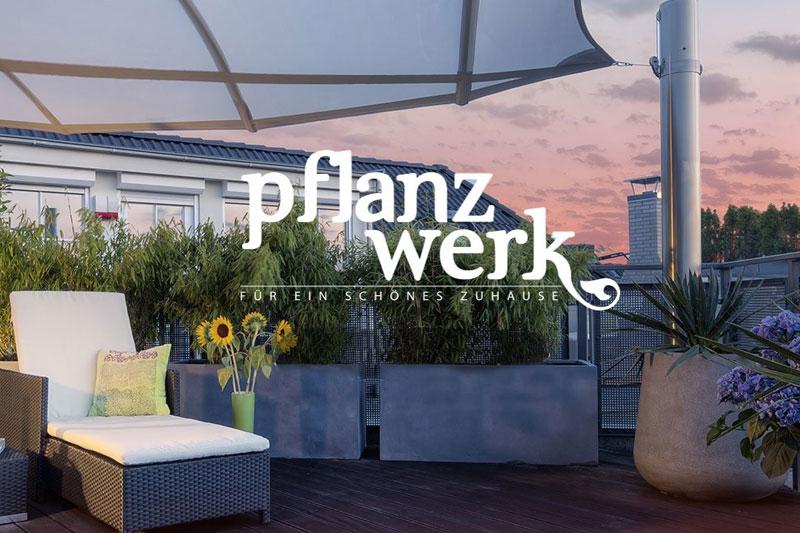 Pflanzwerk am Niederrhein
